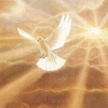 dove-epitomized-holy-spirit